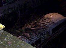 23.02.2017 ++Wuppertal++ Großer Ast fiel auf ICE - Streckensperrung - Zug evakuiert  In Wuppertal fiel am Abend infolge des Sturms ein großer Ast auf einen ICE. Der Unfall ereignete sich am Bahnhof Steinbeck. Der Zug musste vollständig evakuiert werden. Verletzt wurde glücklicherweise niemand. Die Bahnstrecke war für längere Zeit gesperrt. *** Local Caption *** 23.02.2017 ++Wuppertal++ Großer Ast fiel auf ICE - Streckensperrung - Zug evakuiert  In Wuppertal fiel am Abend infolge des Sturms ein großer Ast auf einen ICE. Der Unfall ereignete sich am Bahnhof Steinbeck. Der Zug musste vollständig evakuiert werden. Verletzt wurde glücklicherweise niemand. Die Bahnstrecke war für längere Zeit gesperrt.