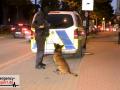 20211006_Grossrazzia_Duesseldorf_Teil1_ANC-NEWS_17