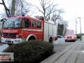 0112_Schlangen_Essen_JustinBrosch