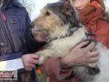 Feuerwehr-rettet-Hund-aus-Fuchsbau-02