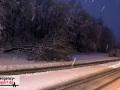 Zwei Bäume aufgrund von Schneelast umgestürzt - Feuerwehr im Ein