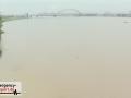Aktuelle Bilder vom Rhein-Hochwasser - Überflutete Krananlagen i